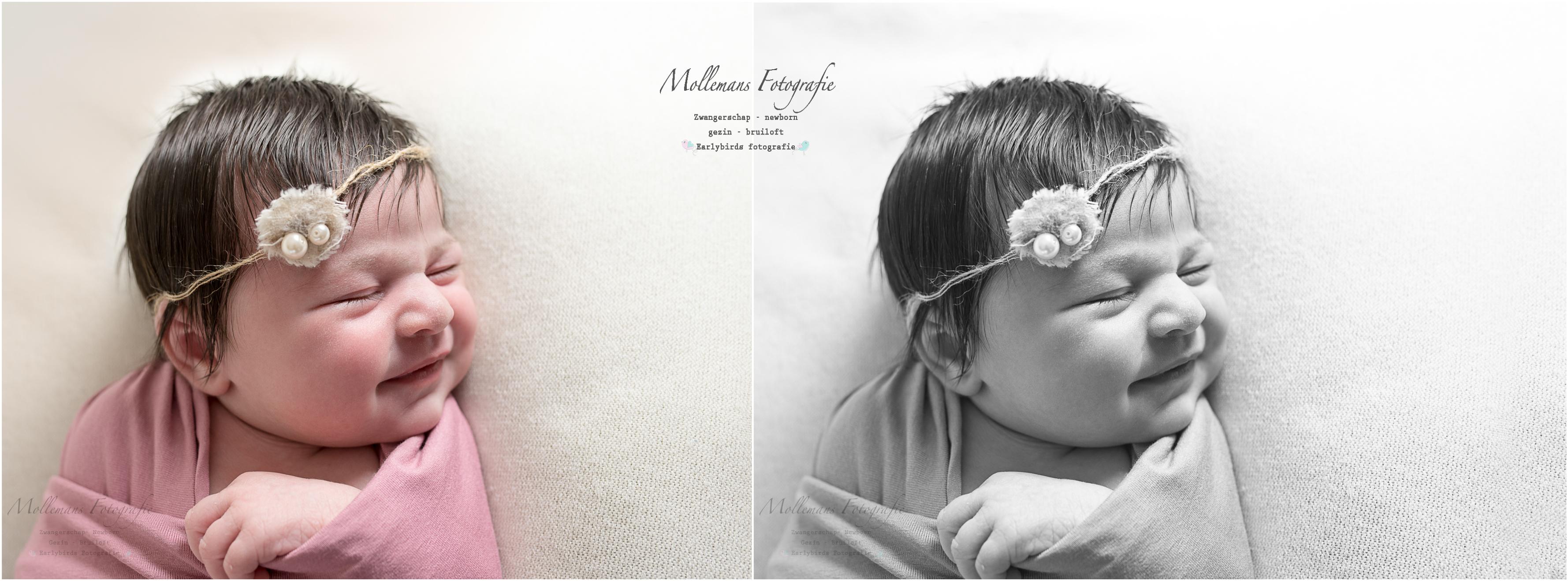 Mollemans fotografie, newborn, someren
