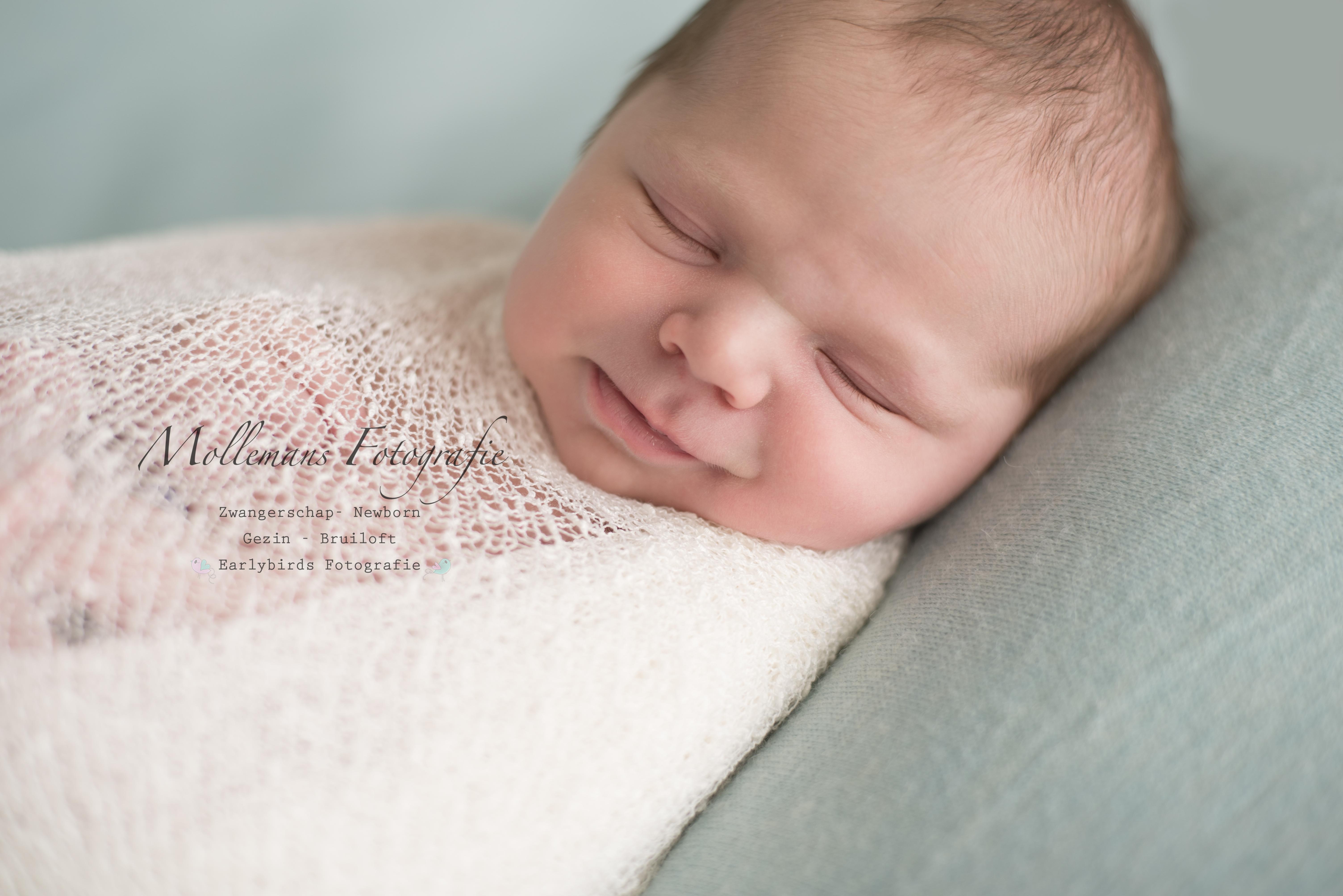 mollemans fotografie newborn beek en donk
