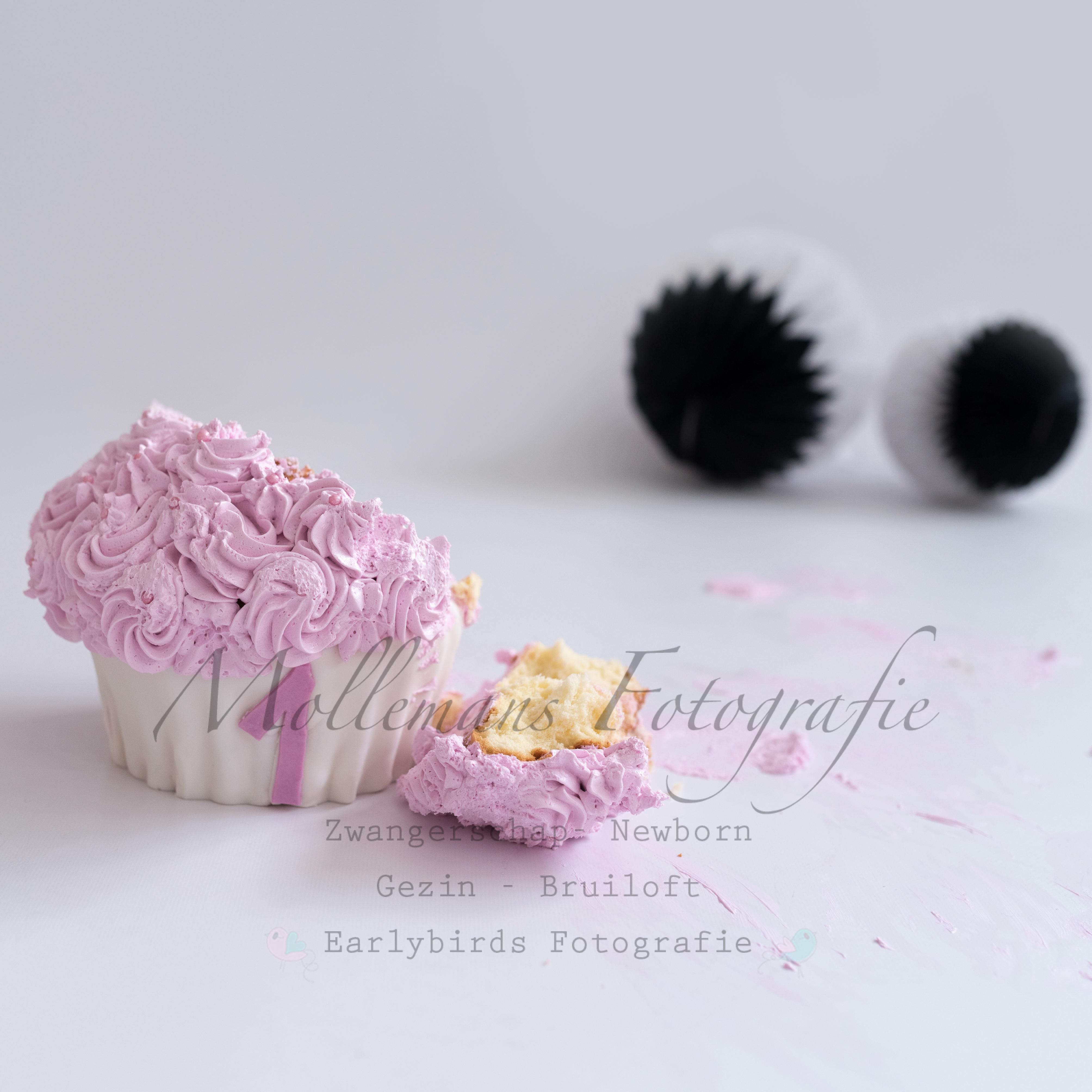 #cakesmash #Mierlo #Mollemans Fotografie