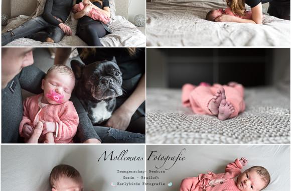 lifestyle fotografie, newborn lifestyle, helmond, mollemans fotografie