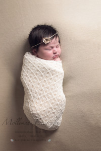 newborn, mollemans fotografie