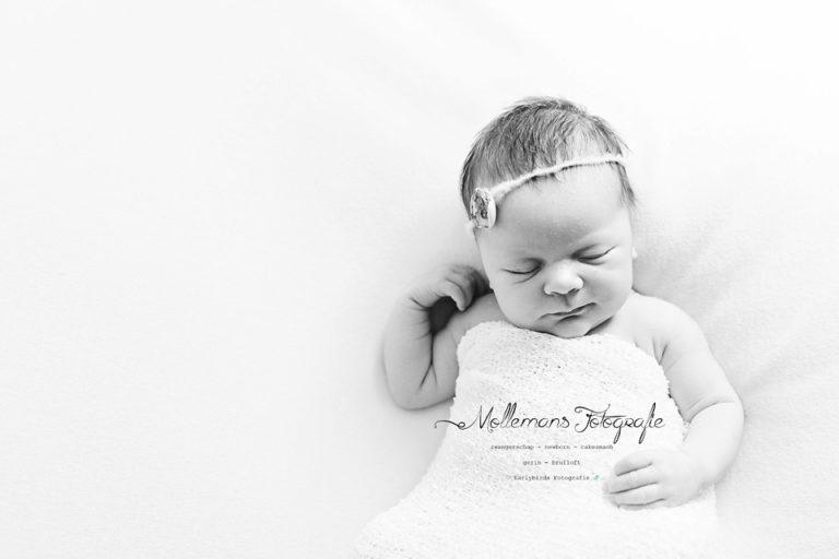 newborn fotografie, helmond, mierlo-hout, meisje,